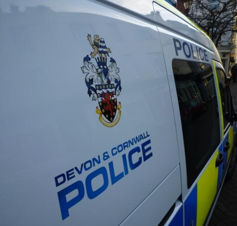 Mid Devon Star: Plymouth police appeal after man punches woman repeatedly in face
