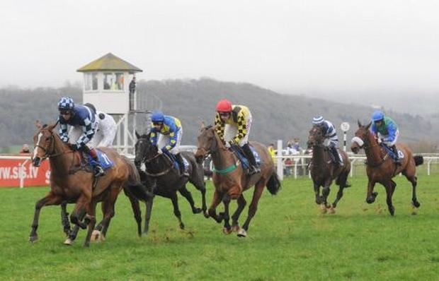 Mid Devon Star: HORSE RACING: McCoy and Tommo heading for Taunton finale tomorrrow evening