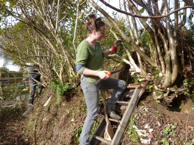 Heritage skills course in Tiverton