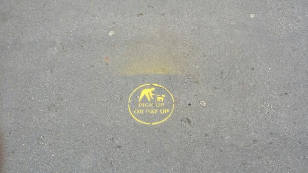 Pavement stencils making a difference in Exeter