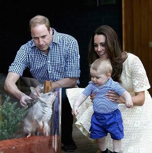 Mid Devon Star: The Duke and Duchess of Cambridge and Prince George of Cambridge look at a Bilby called George at Taronga Zoo in Sydney (PA)