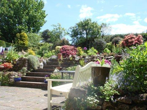 A Weekend of Gardening in Budleigh